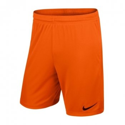 spodenki Nike Park II M 725887 815