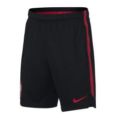 spodenki Nike Dry Poland Squad Shspodenki Nike Dry Poland Squad Shorts 893825 010orts 893825 010