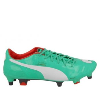Puma Evopower 1 Mixed Sg 102944 03